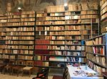 villa paradiso biblioteca